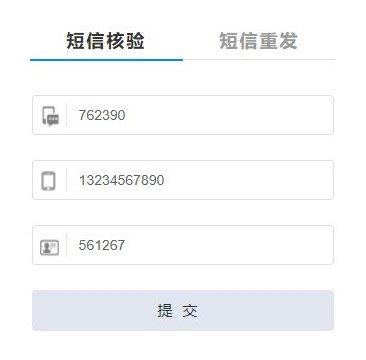 Beispielhaft ausgefülltes SMS-Verifizierungs Formular auf der Webseite des MIIT